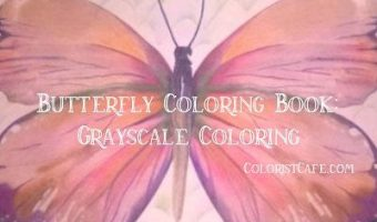 butterfly-coloring-book-grayscale-coloring